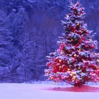 Perfumy kojarzące się ze świętami Bożego Narodzenia