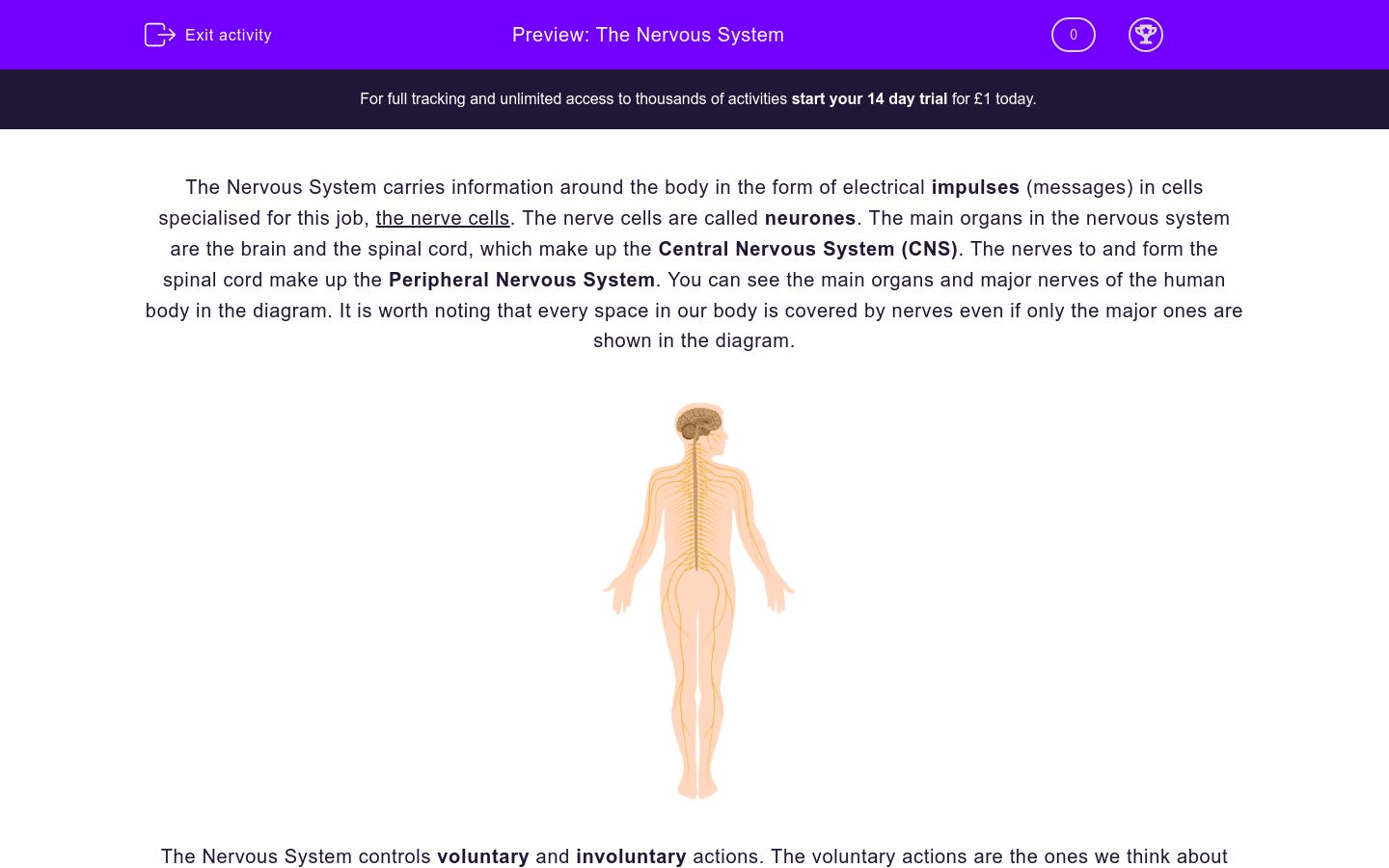 The Nervous System Worksheet