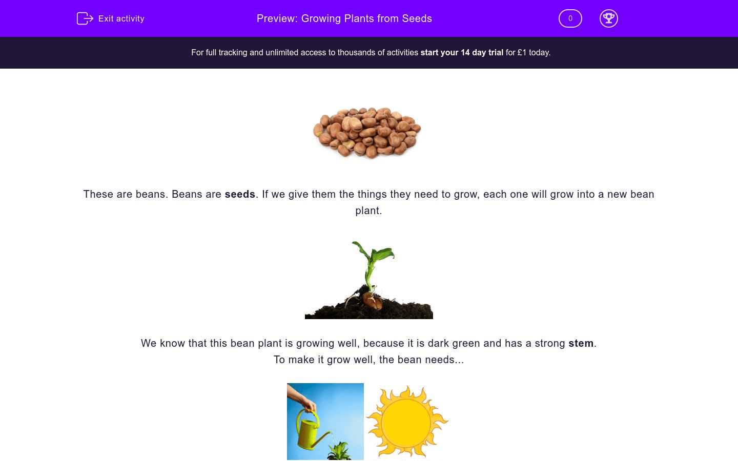 Growing Plants From Seeds Worksheet