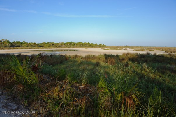 Low water levels at Black Point Wildlife Drive
