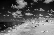 On the beach: Venice, Florida