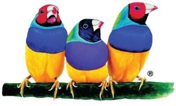 ViewSonic birds