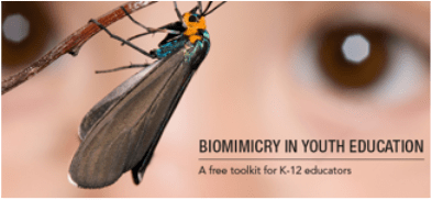 CREDIT Biomimicry Institute