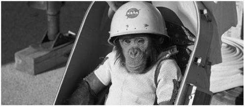 CREDIT MonkeyLearn