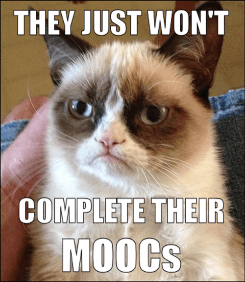 Grumpy cat meme with text they just won't complete their MOOC's