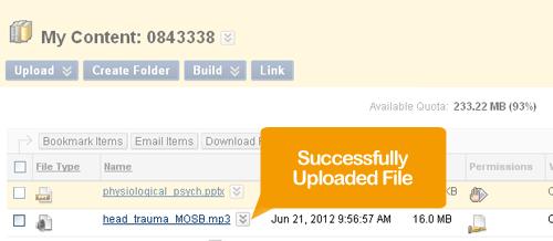 A Successful Upload