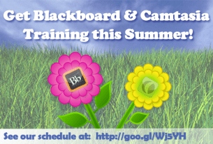 Summer Blackboard & Camtasia Training