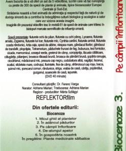RV3 DVD R 2