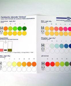 visocolor school scala culori