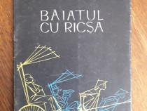 Băiatul cu ricșa, de Alecu Popovici
