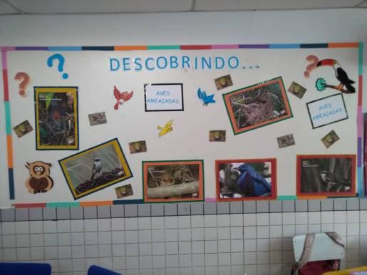 2º ano - Aves - Mural