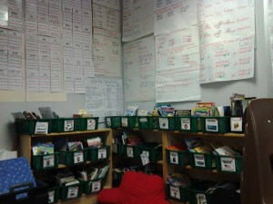 This is my other part of my classroom library - Nonfiction books in English