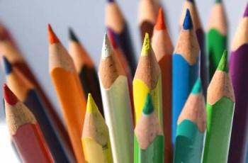 Guia completo: projeto político pedagógico para educação infantil