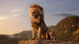 o rei leão e educação infantil