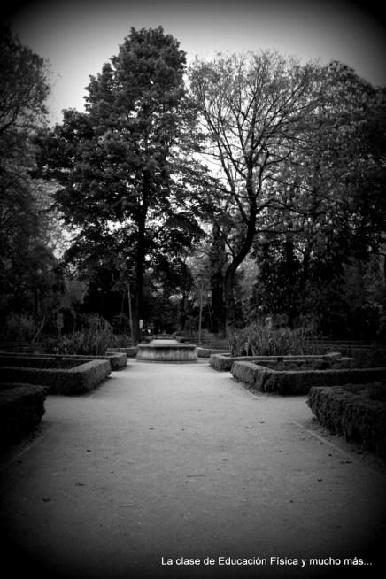 Jardin botanico IV