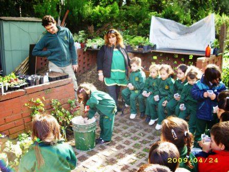 huerta del botanico (5)