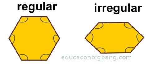 poligono regular e irregular