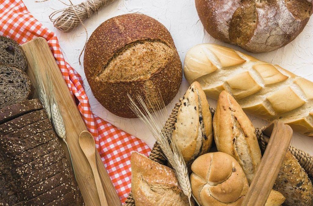 normativa pan