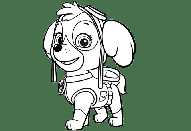 Im genes y dibujos de paw patrol