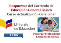 Respuestas del Currículo de Educación General Básica - Curso Actualización Curricular