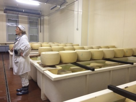 The cheeses are placed in a salt bath
