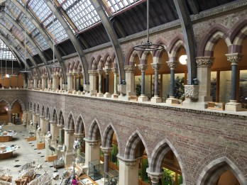 Gothic arches and iron beams support the lofty roof space