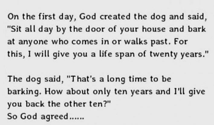 The Stages Of Life Explained Perfectly. This Is So Accurate.