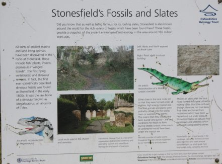 Information about Stonesfield's fossils and slate