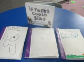 "Our own ""Rock"" books with a story!"