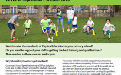 Level 5/6 Primary School Specialism and Subject Leadership in Physical Education and School Sport