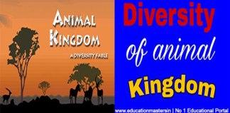 diversityanimal