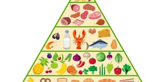 food-pyramid-nutrition