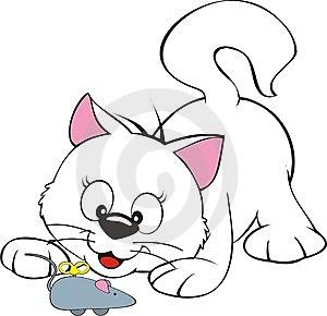 कबरी बिल्ली और टब्बू चूहा…
