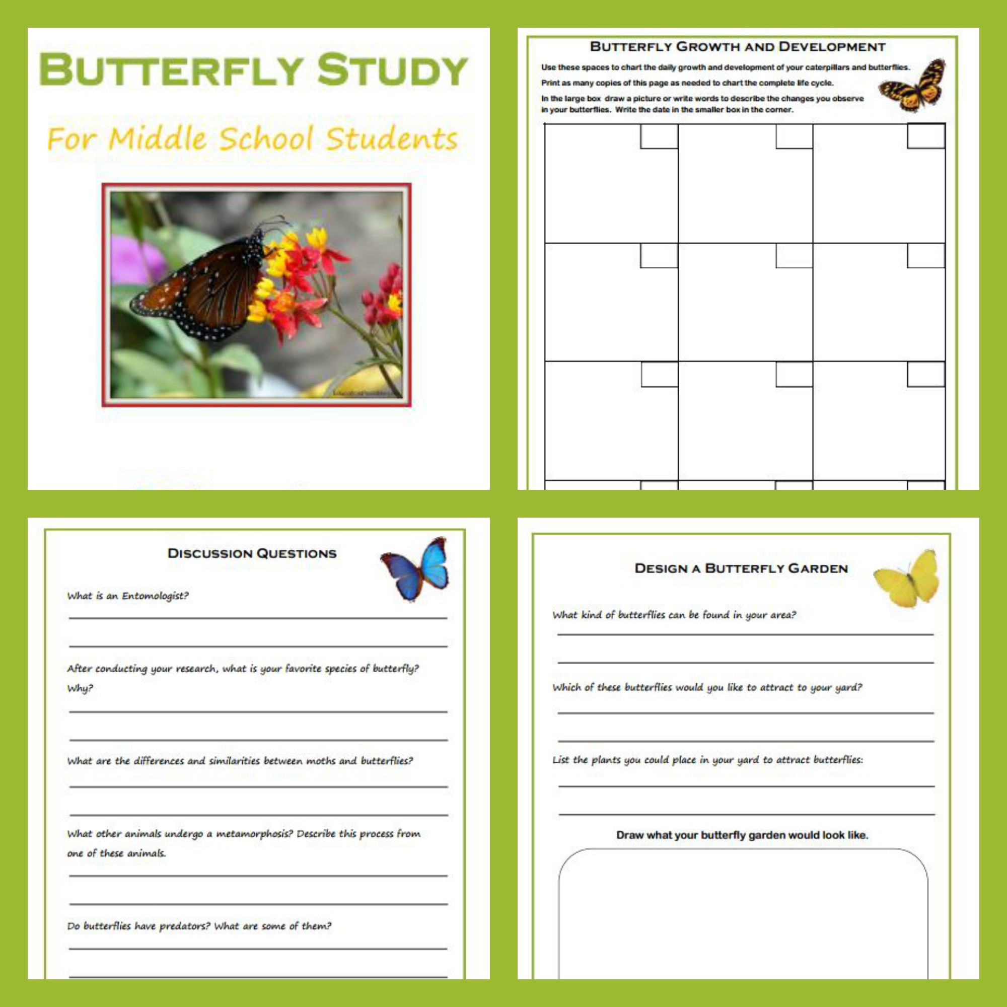 Hands On Science Raising Butterflies With Free Study Download
