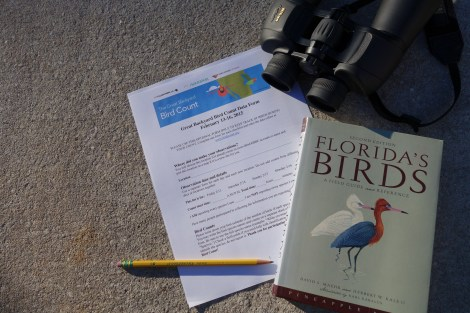 Great Backyard Bird Count - Education Possible