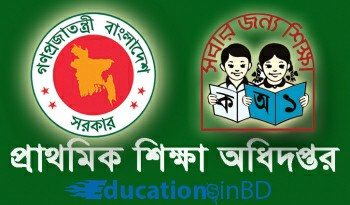 education dpe primary