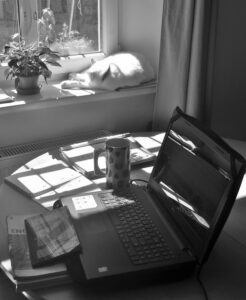 Picture of online teaching at home