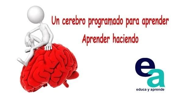 Un cerebro programado para aprender