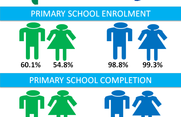 INFOGRAPHICS: What the education statistics say about Nigeria versus Iceland