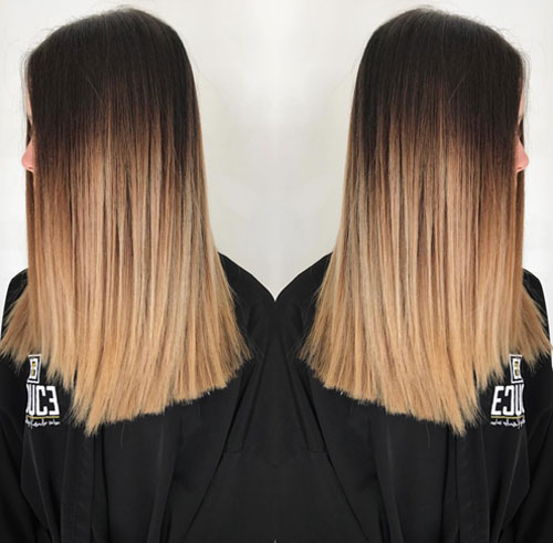Best Ombre Amp Sombre Hair Stylists In Orlando EDUCE SALON