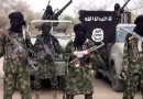 BREAKING: Boko Haram kills scores in Adamwa village