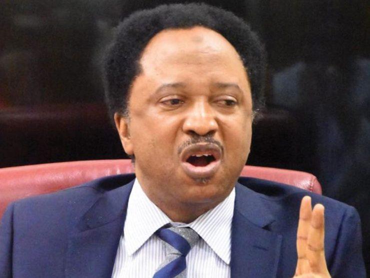 Shehu Sani Reacts As Nigerian Govt Says it'll Not Expose Sponsors of Terrorism