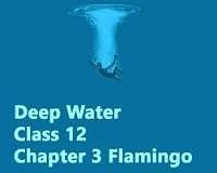 Chapter-3 Deep Water- Extra Questions and Notes |