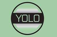YOLO Full-Form | What is You Only Live Once (YOLO)