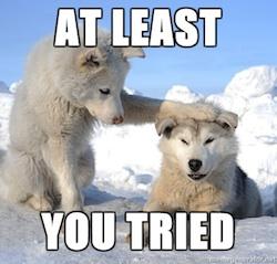 at least you tried polar bear