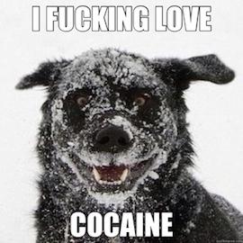 i love cocaine