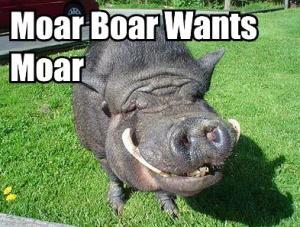 moar boar