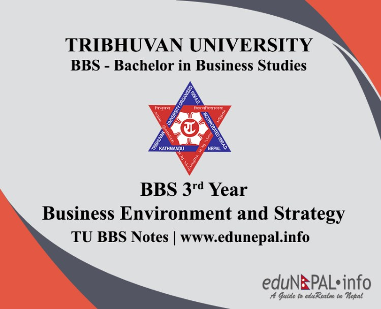 TU BBS Notes 3rd Year Business Environment and Strategy Management
