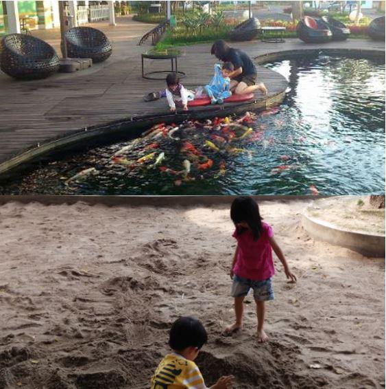 Kolam ikan koi dan main pasir di SMS