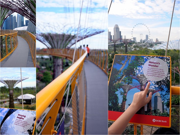 skyway collage
